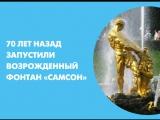 70 лет назад запустили возрожденный фонтан «Самсон»