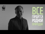 Илья Лагутенко в проекте WWF России «Гордиться — не значит помогать».