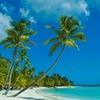 Все о Доминикане