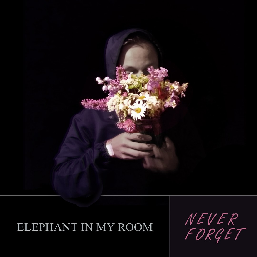 Elephant In My Room - Never Forget [EP] (2017)
