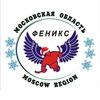 """Болельщики следж хоккейной команды """"ФЕНИКС"""""""
