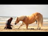 [BEACH] Shilas Eva work on the Beach