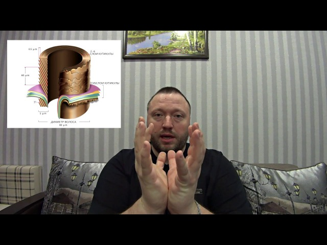 Колористика ч 1 Строение волоса Принцип химического окрашивания Оксиды Как это работает