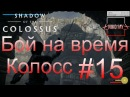 Shadow of the Colossus (В тени колосса) Бой на время: сложный [Колосс] 15