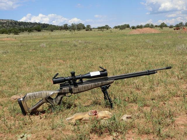 1st Airgun Prairie Dog hunt in Arizona