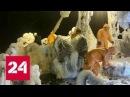 Последнее видео с судна Восток : нас заливает, но как-нибудь прорвемся - Россия 24