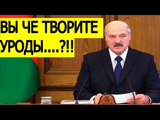 Скандал в Минске! Лукашенко узнал ГОСДОЛГ Беларуси! и как чиновники КИДАЮТ людей с ЗАРПЛАТОЙ!!