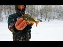 ХОРОШИЙ ОКУШАРА Зимняя Рыбалка на Волге Глухозимье База ЕРШИХА 16 02 2018