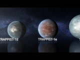 Planet Parade the seven planets of TRAPPIST-1