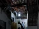 Jumento cai do telhado no município de Cajazeiras-PB