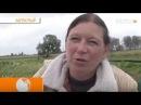 Беларусы о жизни в Беларуси