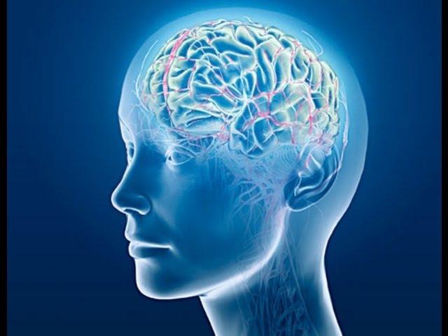Тайны мира Как мозг принимает сигналы Вселенной