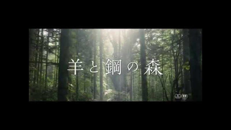 """Трейлер фильма """"Лес шерсти и стали"""" с Ямадзаки Кенто и Миура Томокадзу"""