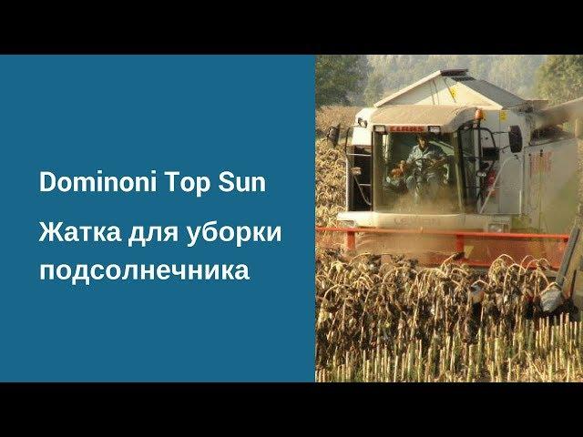 DOMINONI TOP SUN жатка для уборки подсолнечника. Работа жатки. Эффективная уборка подсо...