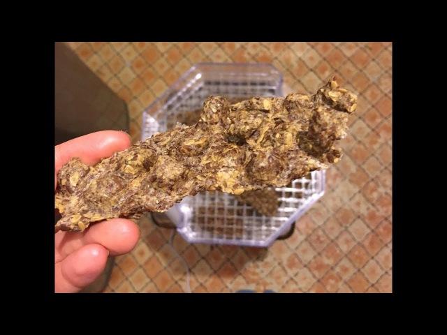 Сыроедные льняные хлебцы в дегидраторе