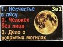 Истории на ночь (3в1): 1.Несчастье в лесу, 2.Человек без лица, 3.Дело о вскрытых м0гилах