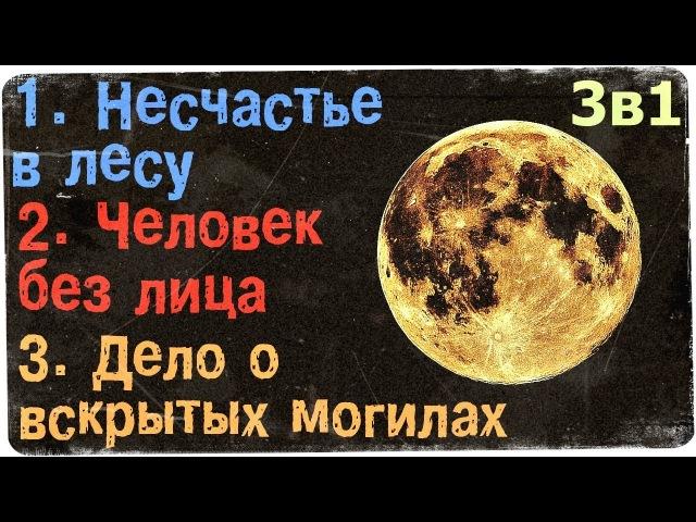 Истории на ночь (3в1) 1.Несчастье в лесу, 2.Человек без лица, 3.Дело о вскрытых м0гилах