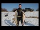 Подводная охота на трофейную щуку зимой часть №3.
