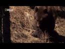 Национальные парки Америки 2 я серия Йосемити