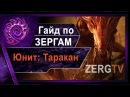 ★ Гайд по ЗЕРГАМ 1 - Юнит Таракан - StarCraft 2 c ZERGTV ★
