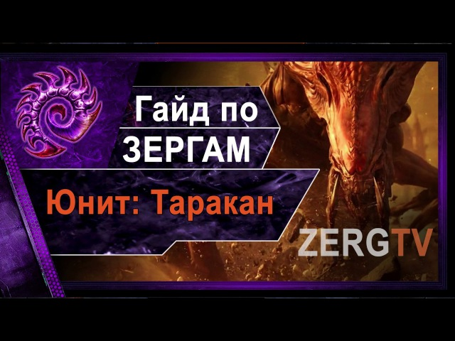 ★ Гайд по ЗЕРГАМ 1 - Юнит: Таракан - StarCraft 2 c ZERGTV ★