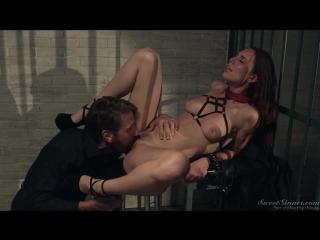 Aidra Fox & Steve Holmes [HD 1080, All Sex, Teen, Big Tits, Brunette, Bubble Butt, Hairy, Cumshot]