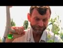Афганистан Судьба украинского моджахеда Последний шурави Украина 2013 год