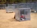Новый контактный зоопарк. Теперь животные не сидят в клетке
