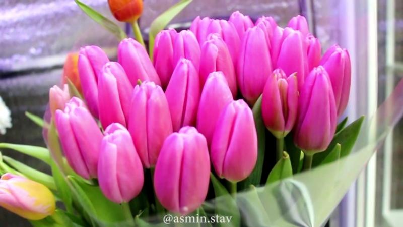Реклама для цветочного магазина Асмин