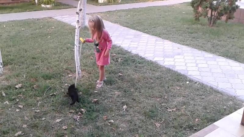 Вита нашла друга
