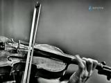 Leonid Kogan Mozart Concerto No.5 (1968) (1)