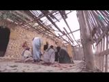 Кто лучше Умар или Абу Бакр (да будет доволен ими Аллах)