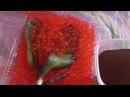 Как восстановить тургор листьев у орхидей! Наращивание корней. Гидрогель..