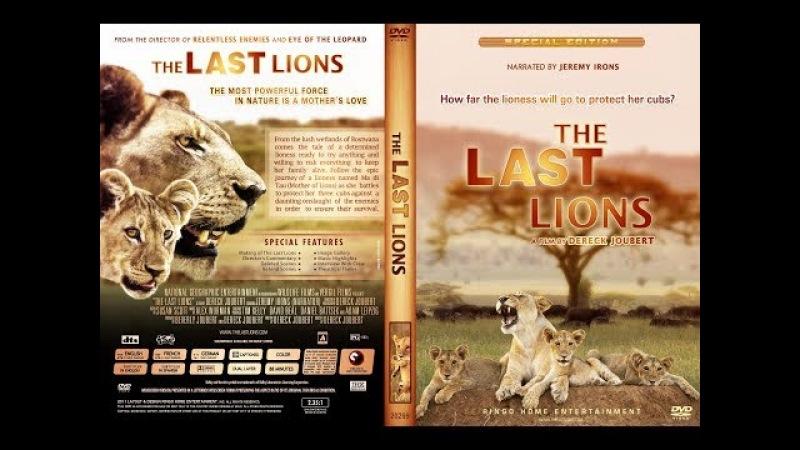 Последние львы Ма ди Tау защитница львов Ma di Tau The Last Lions 2011 Full HD 1080p