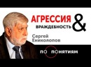 Агрессия Враждебность ПО ПОНЯТИЯМ Сергей Ениколопов