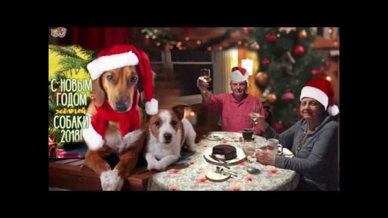 E.METTER New Year 2018 (Наташа Королёва и Герман Титов-Мой Дед Мороз