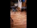Охота на мышь