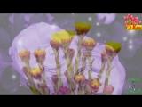 Самая_лучшая_красивая_открытка_с_8_марта__Красивое_поздравление_на_8_марта.mp4