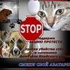 """Общество помощи животным """"СПАСЕНИЕ"""" г. Семей"""
