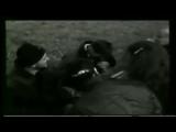 Криминальные куклы (Всё по-взрослому) - Не женское дело (Зона) - Детективные истории (2017)