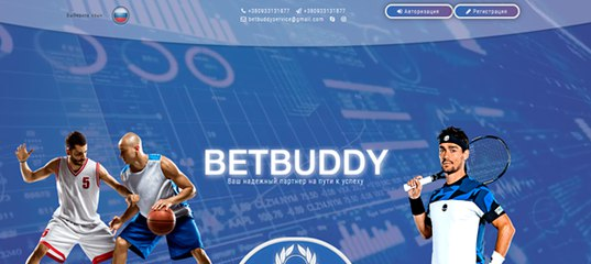Мониторинг инвестиционного проекта Betbuddy LTD