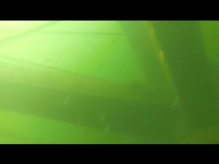 Дайвинг в Г. Брянск, озеро Керамзитка🐠🌊