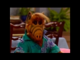 Alf Quote Season 2  Episode  23_Он черствый