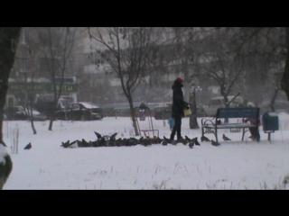 Зима, люди и голуби