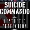 02.03 - Suicide Commando (BEL) - Opera (С-Пб)