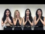 [PROMO] 170913 T-ara - Three Friends Talk & Concert in Tokyo