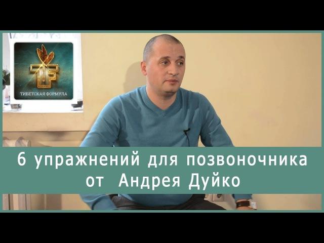 6 упражнений для позвоночника! Андрей Дуйко.