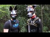 Recon meets Spikepup93 &amp Lumos