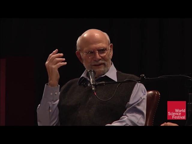 Оливер Сакс Галлюцинации интеллектуальная беседа со знаменитым нейропсихологом русская озвучка