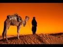 Сағд ибн Әбу Уаққастың анасы исламды Қабылдауы /Ерлан Ақатаев ᴴᴰ